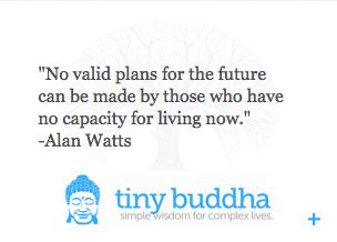 Introducing The Tiny Buddha Quote Widget