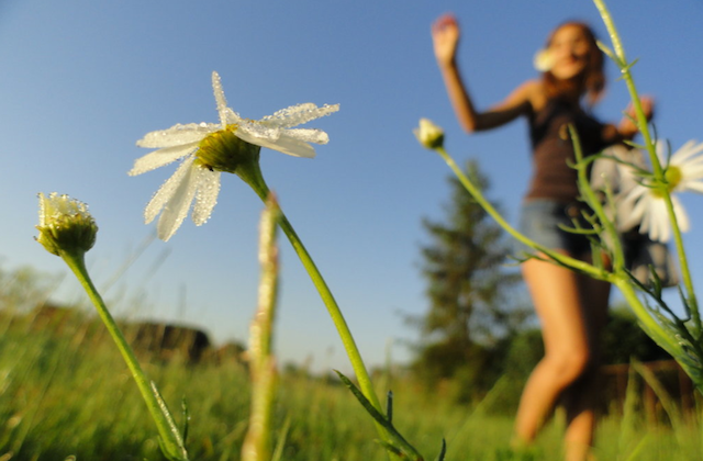 Dancing in a Field of Flowers