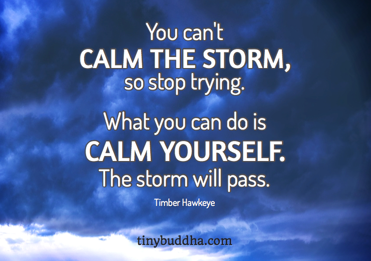 You Can\'t Calm the Storm