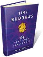 Tiny Buddha's 365 Tiny Love Challenges book cover