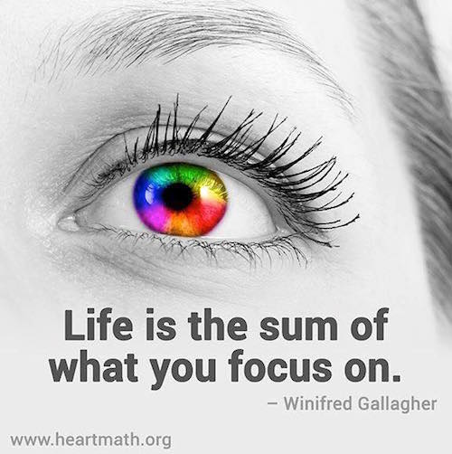 Life is the sum of what you focus on