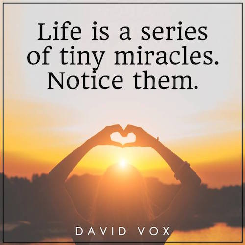 Life Is a Series of Tiny Miracles