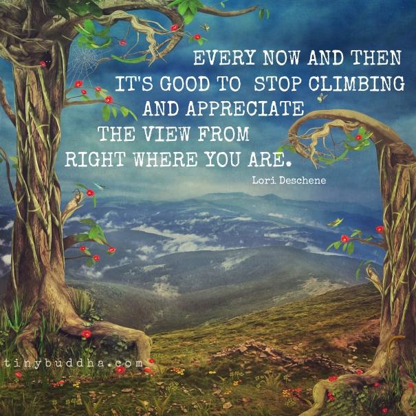 Stop-climbing.jpg