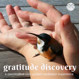 Gratitude Discovery logo