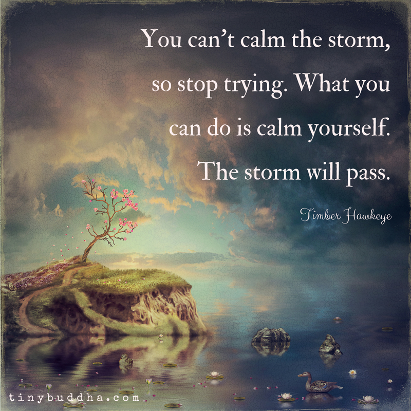 You Cant Calm the Storm - Tiny Buddha