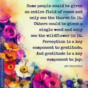 Gratitude Is a Key Component to Joy