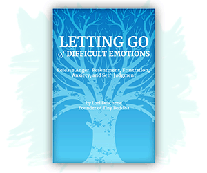 Letting Go of Difficult Emotions ebook